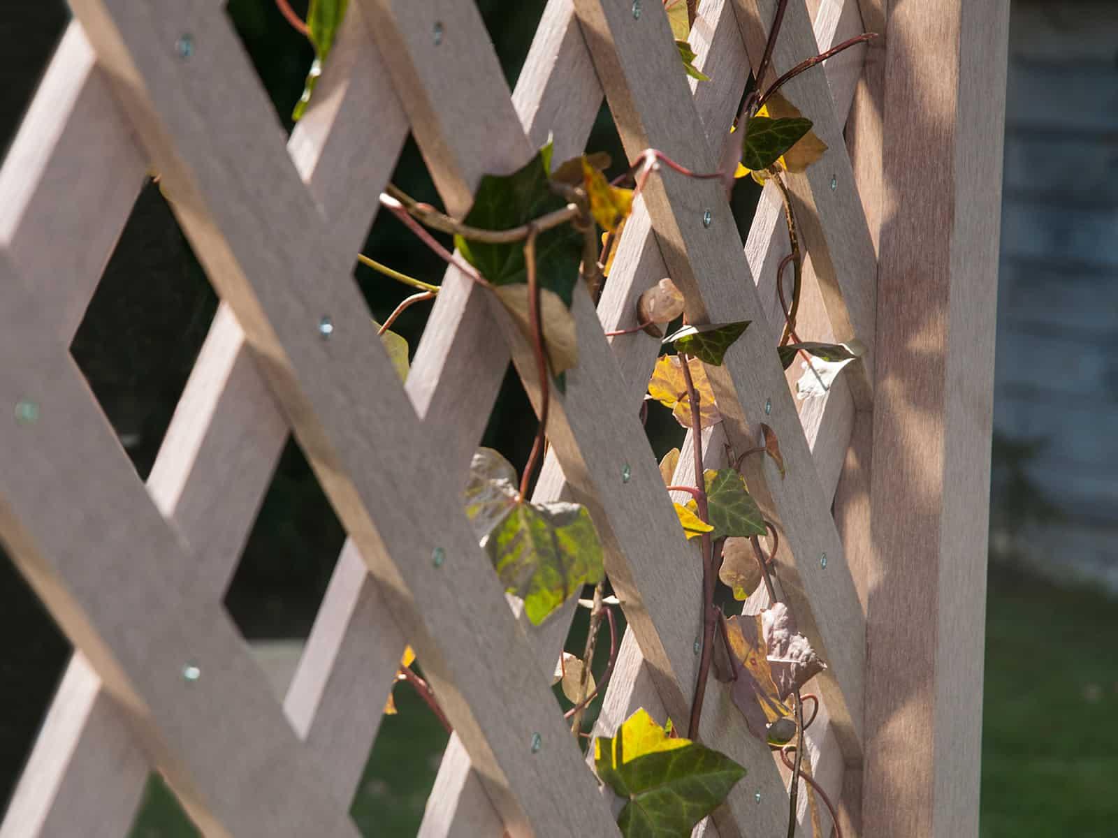 Sichtschutz-Gitter, Rankhilfe